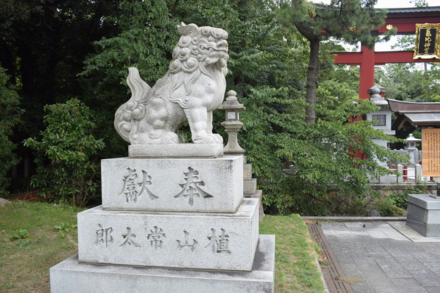 敦賀市内の写真0273