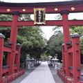 Photos: 敦賀市内の写真0275