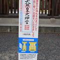 Photos: 敦賀市内の写真0277