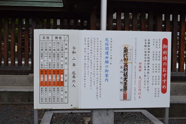 Photos: 敦賀市内の写真0278