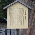 Photos: 敦賀市内の写真0281