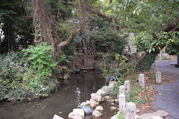 敦賀市内の写真0286