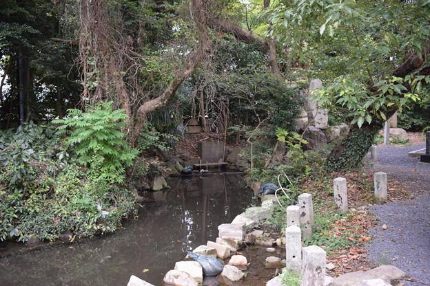Photos: 敦賀市内の写真0286