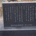 Photos: 敦賀市内の写真0288