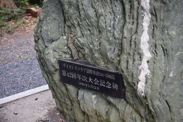 敦賀市内の写真0289