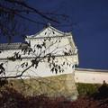 Photos: Himeji Castle Ninja Night2020 0017