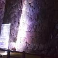 Photos: Himeji Castle Ninja Night2020 0022
