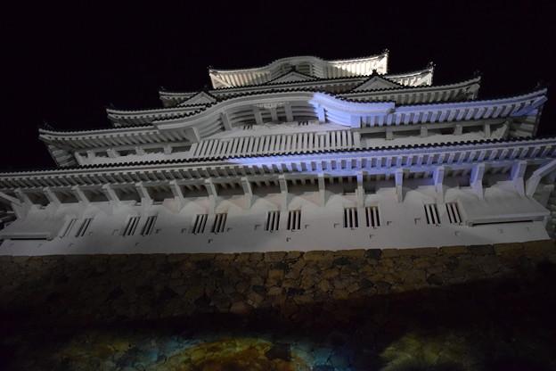 Himeji Castle Ninja Night2020 0030