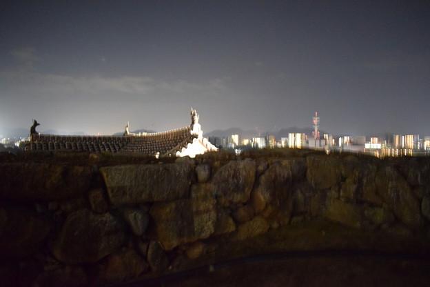 Himeji Castle Ninja Night2020 0034