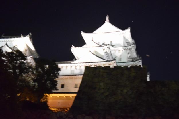 Himeji Castle Ninja Night2020 0040