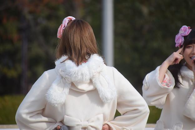 Photos: ひめじsubかる(2021)0007