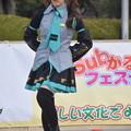Photos: ひめじsubかる(2021)0147