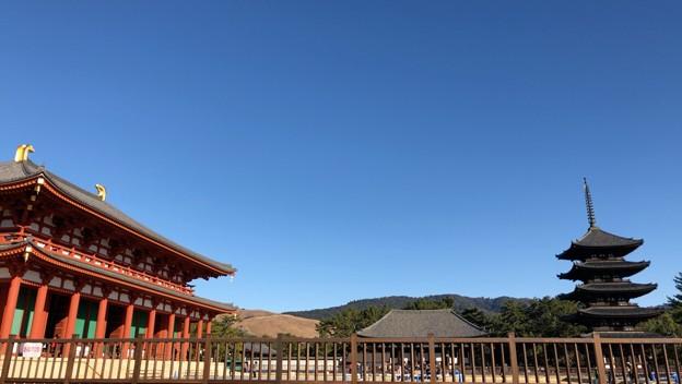 興福寺 初春 2019