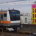 写真: E233系T33編成  (12)