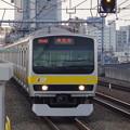 写真: E231系B7編成 (5)
