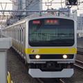 写真: E231系B7編成 (7)