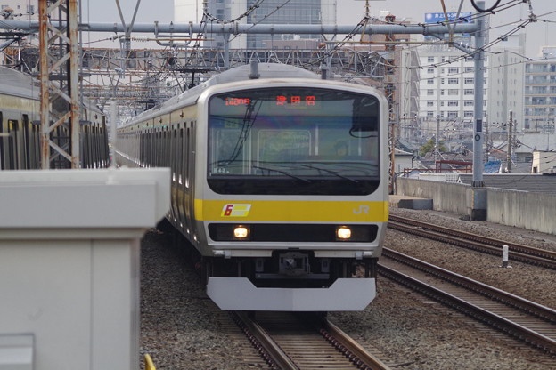 写真: E231系B42編成 (2)