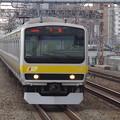 写真: E231系B24編成 (2)