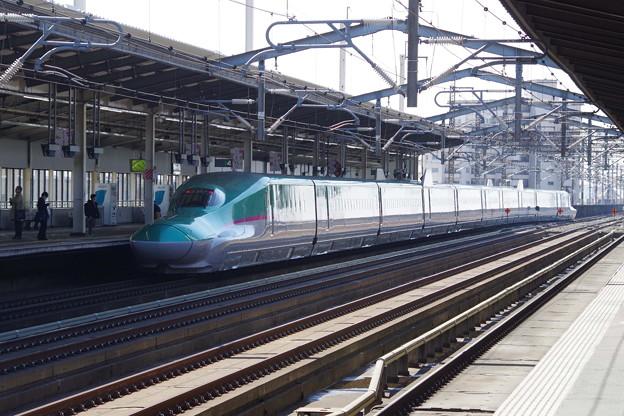E5系U31編成 (5)