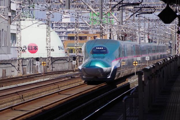 E5系U33編成  (1)