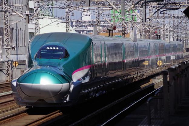 E5系U33編成  (8)