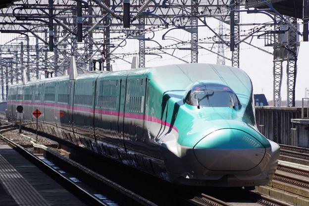 E5系U33編成  (9)
