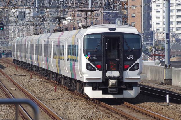 E257系M103編成 (5)