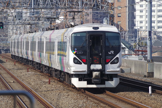 E257系M103編成 (6)
