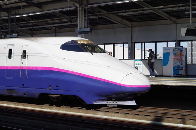 E2系J55編成 (1)