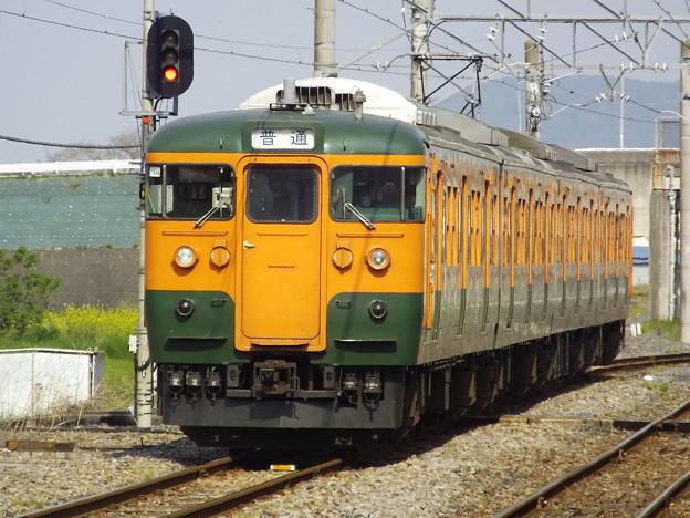 115系T1144編成 (6)