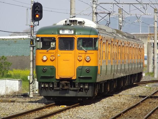 115系T1144編成 (8)