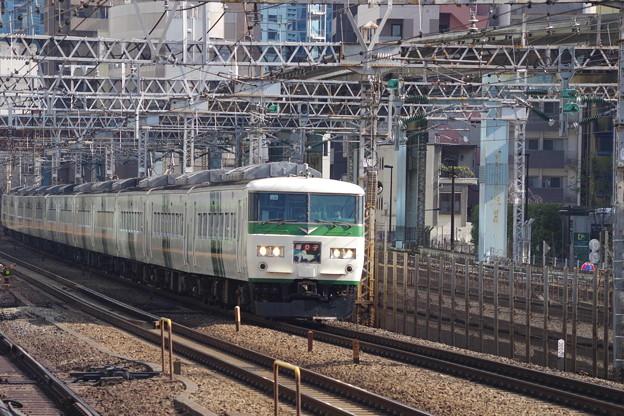 185系OM08編成+C2編成 (1)