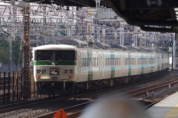 185系OM08編成+C2編成 (12)
