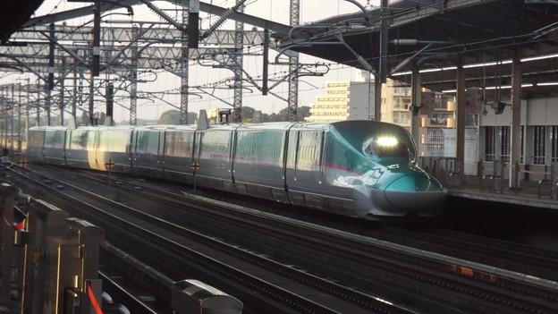 E5系U33編成  (4)