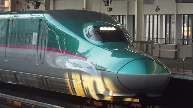 E5系U33編成  (5)