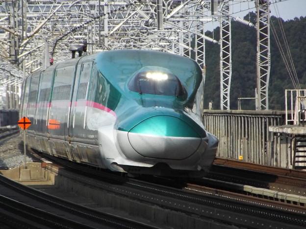 E5系U31編成 (7)