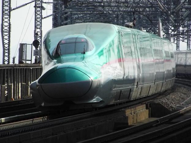 E5系U31編成 (11)