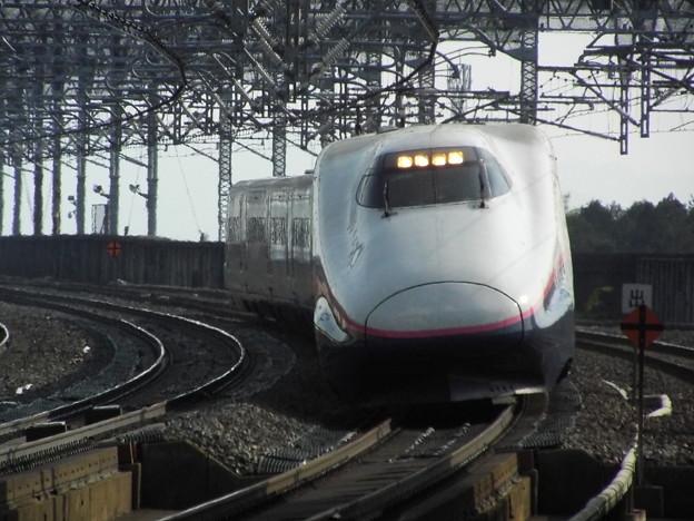 E2系J62編成 (1)