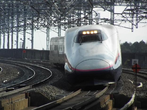 E2系J62編成 (2)