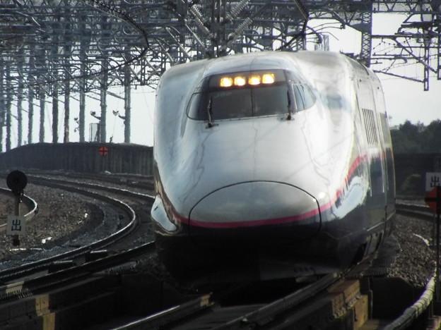 E2系J62編成 (8)