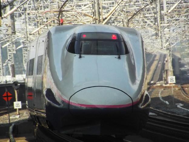E2系J65編成 (10)