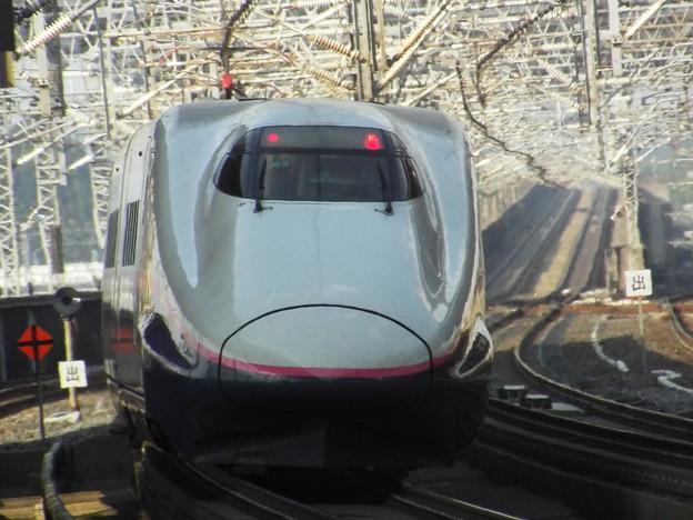 E2系J65編成 (12)