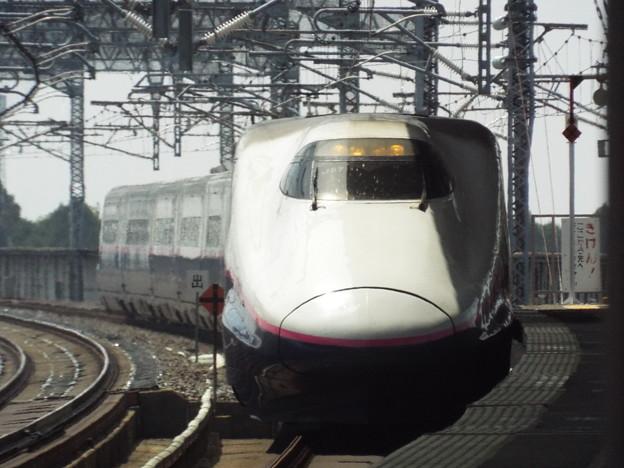 E2系J57編成 (4)