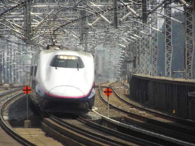 E2系J60編成+E3系L54編成  (1)