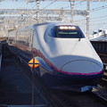 写真: E2系J13編成 (5)