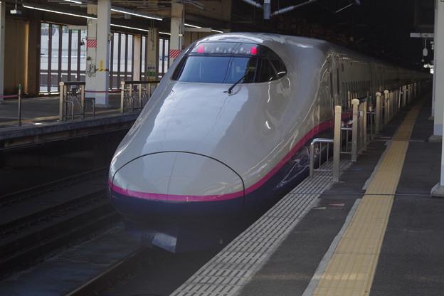 写真: E2系J13編成 (9)