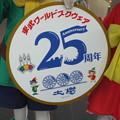 写真: 大樹 東武ワールドスクウェア25周年 レプリカヘッドマーク (2)