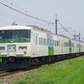 185系B6編成 (1)