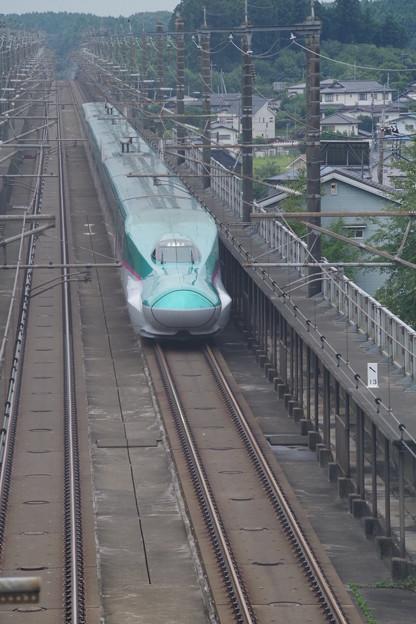 E5系U41編成 (1)