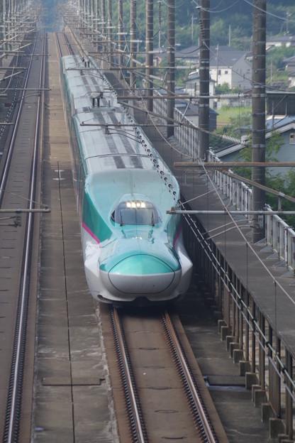 E5系U17編成 (3)